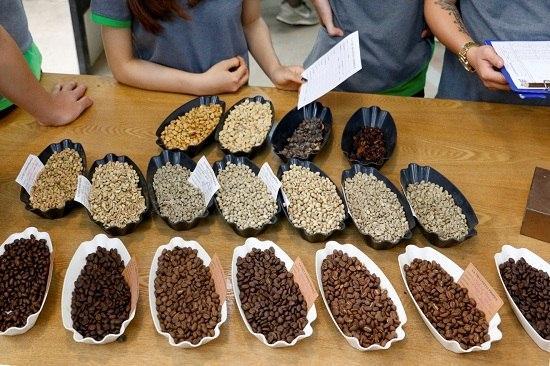 Điều gì xảy ra trong quá trình rang cà phê: Những thay đổi vật lý